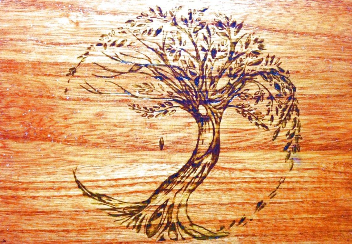 древесина для выжигания вяз